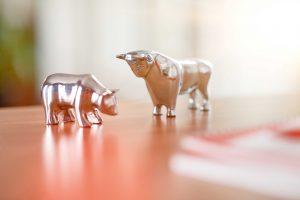 Bulle und Bär, Kapitalmarkt, Aktienmarkt, Börse, Ausblick
